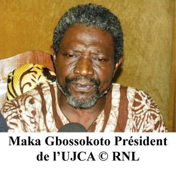La nouvelle date des élections en Centrafrique, approuvée par l'UJCA